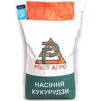 Семена кукурузы ДН Синевир ФАО 190