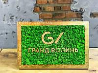 Логотип в рамке из дерева