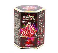 """Набор для проведения опытов """"Growing Crystal"""" (укр) GRK-01-03U"""