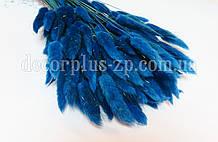 Лагурус - сухоцвет цветной, синий (упаковка - 10 веточек)