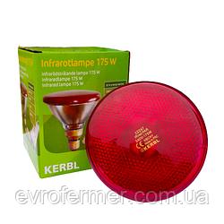 Інфрачервона лампа PAR38 175W KERBL