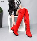 Демісезонні жіночі червоні ботфорти на обтяжном підборах, натуральна замша 36 40 ОСТАННІ РОЗМІРИ, фото 4