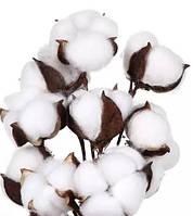 Гілка бабовни на гнучкій основі білогоого кольору Б-2