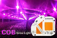Комплект Линза и Светодиодная фито матрица  для растений  LED COB 50вт 230в Full Spectrum, фото 2