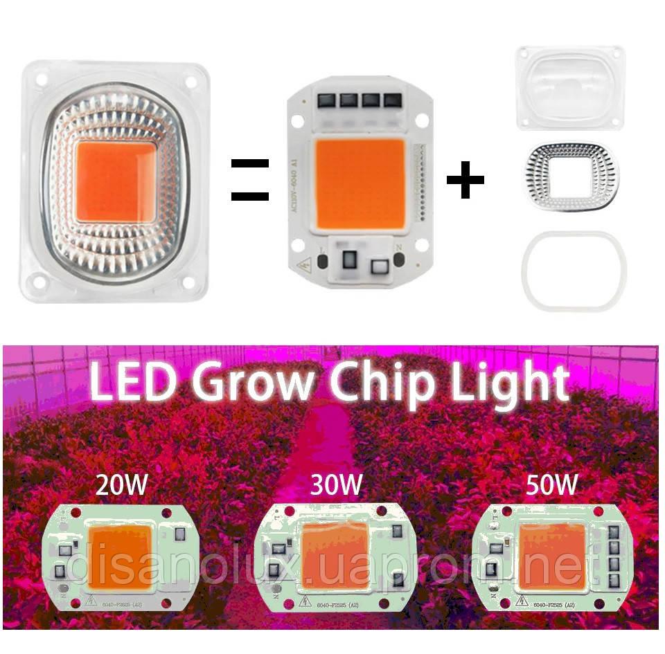 Комплект Линза и Светодиодная фито матрица  для растений  LED COB 50вт 230в Full Spectrum
