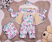 Детский зимний комбинезон тройка для девочек от 0 до 2-х лет, фото 1