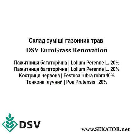 Газонна трава трави EuroGrass Renovation / Регенерація, 10 кг (DSV, Німеччина), фото 2