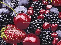 Картина за номерами Ідейка «Смак літа» 30x40 см (КНО5541), фото 4