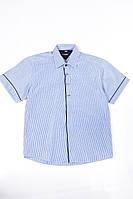 Сорочка 120P293 junior (Біло-синій)