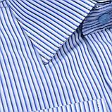 Сорочка чоловіча, прямого крою з довгим рукавом Birindelli 03-259 80% бавовна 20% поліестер L(Р), фото 2