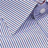 Сорочка чоловіча, прямого крою з довгим рукавом Birindelli 03-418 80% бавовна 20% поліестер M(Р), фото 2