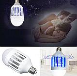 Светодиодная лампа приманка уничтожитель насекомых Zapp Light, фото 5