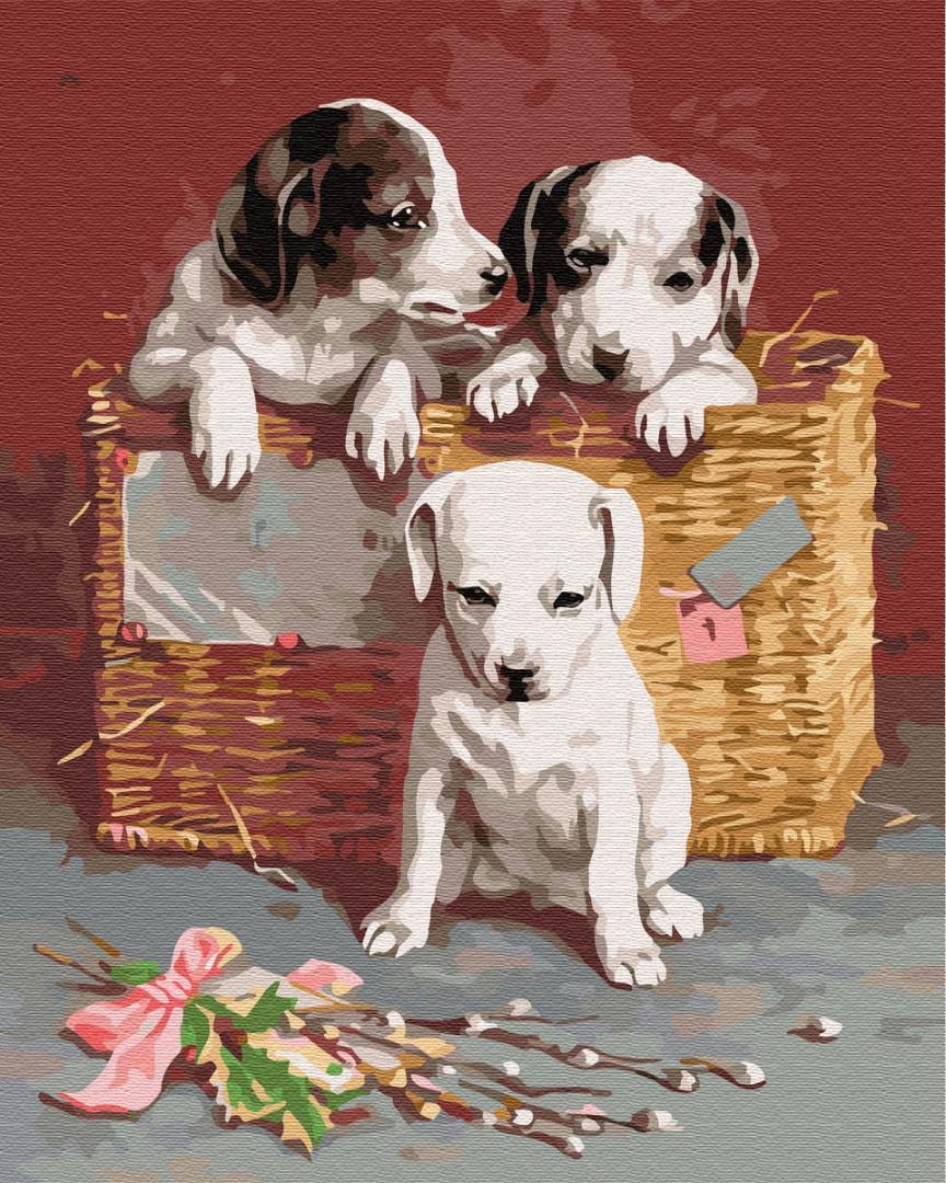 Картина рисование по номерам Brushme Щенки в корзине BRM8384 40х50 см Коты и собаки набор для росписи краски,