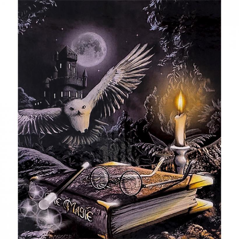 Картина по номерам 40x50 30339 DIY Магия, в подарочной упаковке