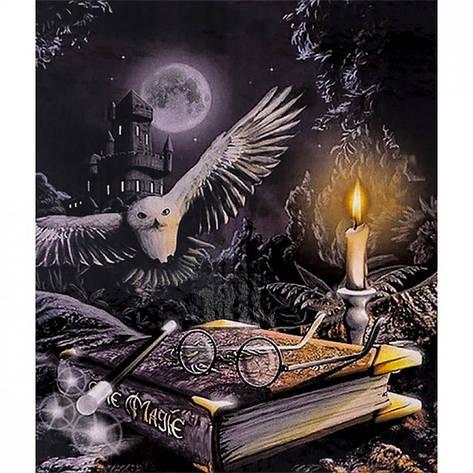 Картина по номерам 40x50 30339 DIY Магия, в подарочной упаковке, фото 2