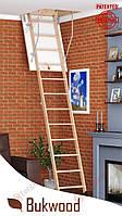 Чердачная лестница 90x60 Bukwood Compact Mini