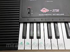 Детский синтезатор в ритме детства с микрофоном 44 клавиши Tilly, фото 3