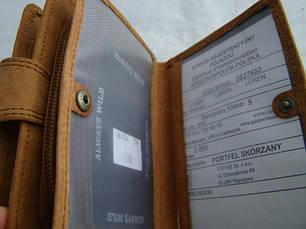 Жіночий шкіряний гаманець Wild N404 CH Світло-коричневий, фото 3