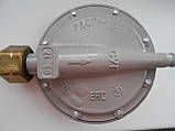 Редуктор газовый РДСГ-1-1,2 (Белорусия), фото 2