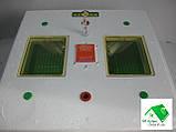 Инкубатор Квочка МИ-30-1 с цифровым терморегулятором, фото 4
