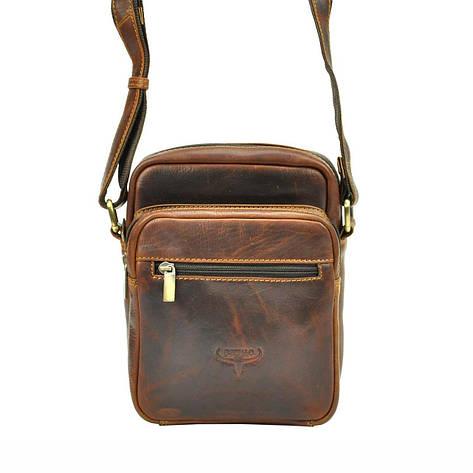 Мужская кожаная сумка Wild BUFFALO TB-011-COM Коньяк, фото 2