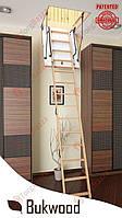Чердачная лестница 110x60 Bukwood Luxe Long
