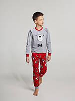 Детская пижама для мальчика утепленная Ellen BNP 041/001 (рост 128), фото 1