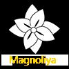 Магазин модного одягу, сумок та аксесуарів - Магнолія