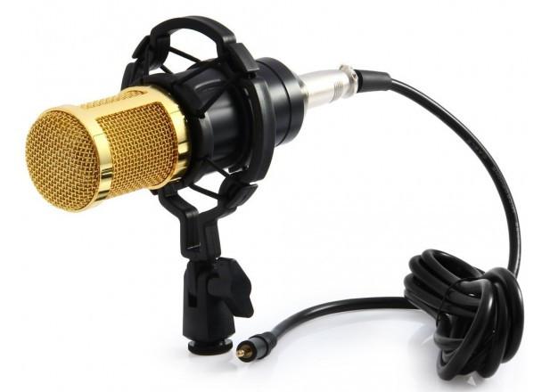 Микрофон студийный DM 800 для студийной записи