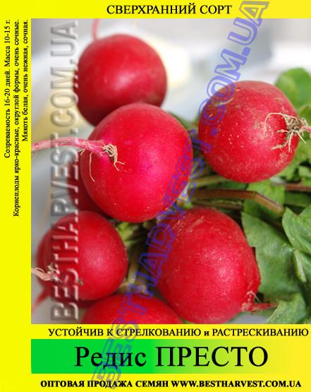 Семена редиса Престо 1 кг