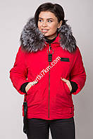 Куртка короткая зимняя  Damader 21057