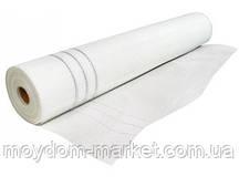 Сітка скловолоконна штукатурна 2.5х2.5; 1мх50м М-60/50м біла