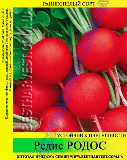 Семена редиса Родос 1 кг