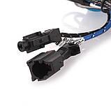 Ксеноновая лампа PROLIGHT CERAMIC BLUE H11 5000K 35W (2 шт.), фото 3