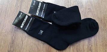 """Чоловічі шкарпетки,махрові  """"Житомир """" 42-45"""
