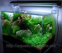Аквариум из ультрапрозрачного стекла