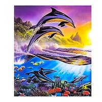 """Картина по номерам """"Дельфины 3"""", 40х50см. №30371"""
