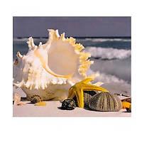 "Картина раскраска по номерам ""На берегу океана"", 40х50см. №30390"