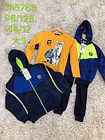 Спортивные костюмы на мальчика оптом, S&D, 98-128 рр