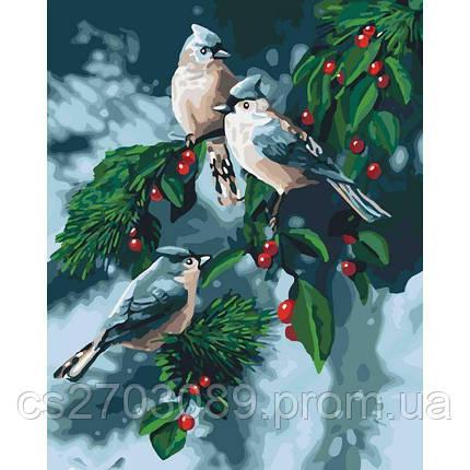 """Набор для росписи. Животные, птицы """"Зимние птицы"""" 40*50см, фото 2"""