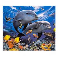 """Живопись раскраска по номерам """"Дельфины 4"""", 40х50см. №30405"""