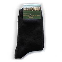 Мужские махровые носки Житомир - 11,50 грн./пара (Elite)