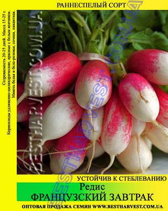Семена редиса Французский завтрак 1 кг, фото 2