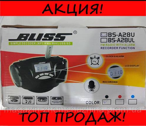 Радиоприёмник BLISS BS-A28U, фото 2