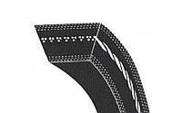 Ремінь 2НВ-4312 LA PIX (2НВ-4280 Lp) (РСМ6201378)