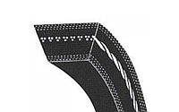 Ремень 45-19-3283 зубчатый PIX Z34121