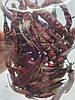 Перец Чили стрючок копченый 25 г, фото 2