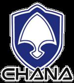Чехлы для Chana (Чана)