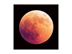 Картина на склі Signal Місяць MOON80