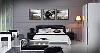 С-501 Кровать с подъемным механизмом 1600*2000 (без матраса)